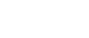 Paranormal Punchers logo