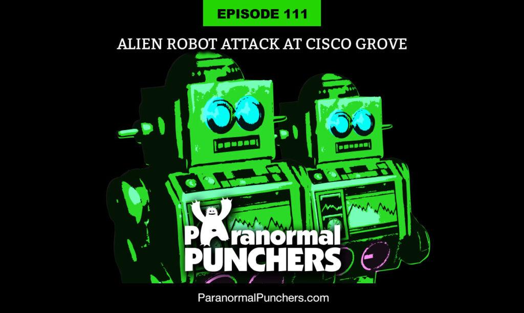 Alien Robot Attack at Cisco Grove